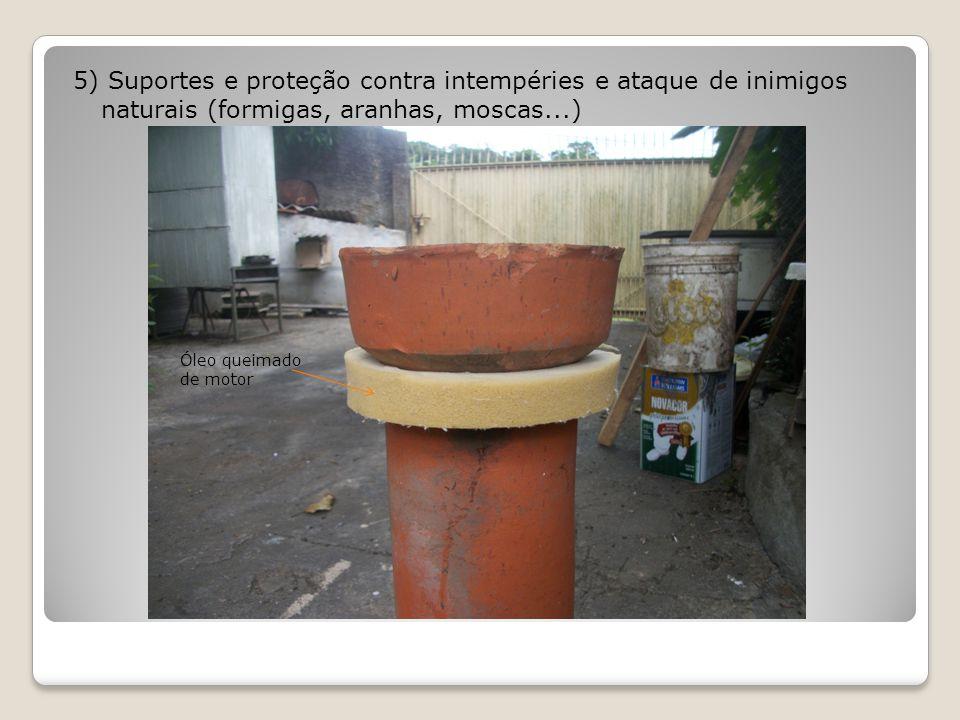 5) Suportes e proteção contra intempéries e ataque de inimigos naturais (formigas, aranhas, moscas...) Óleo queimado de motor