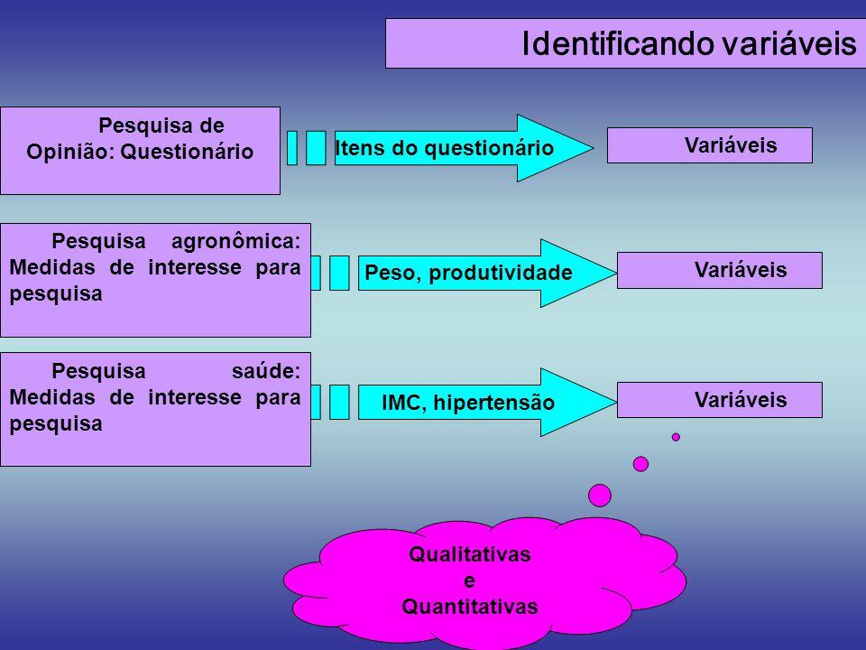 Identificando variáveis Pesquisa de Opinião: Questionário Variáveis Itens do questionário Pesquisa saúde: Medidas de interesse para pesquisa Qualitati