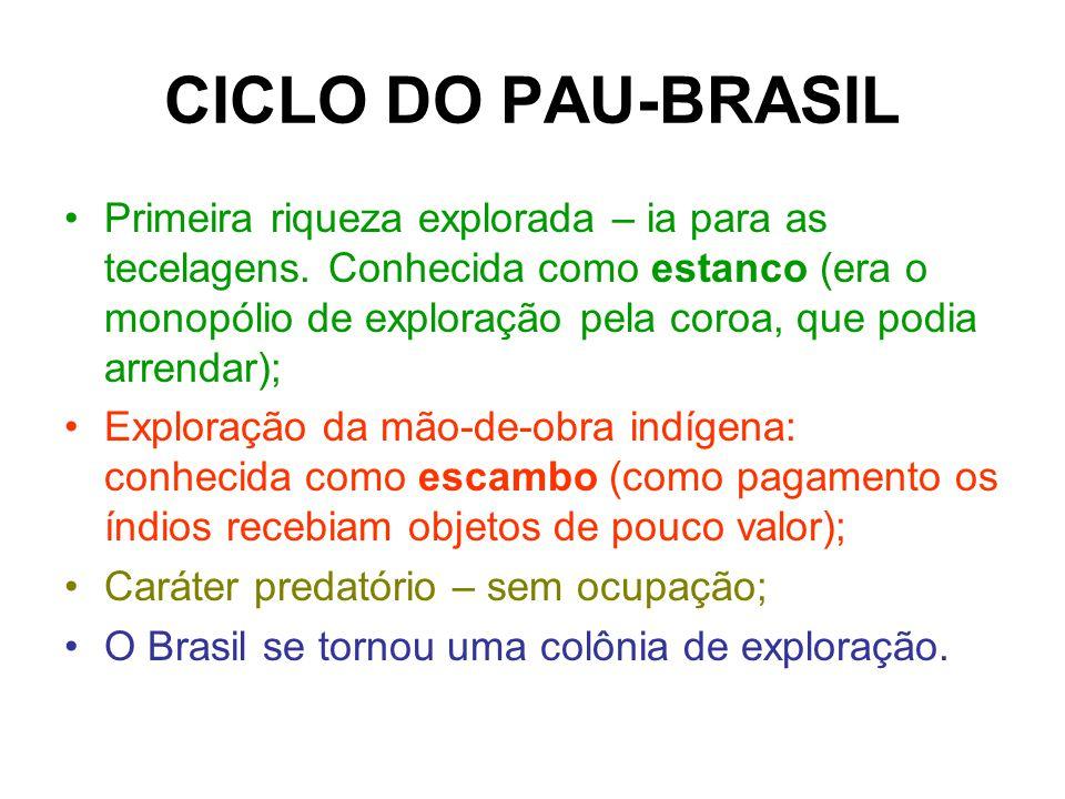 CICLO DO PAU-BRASIL Primeira riqueza explorada – ia para as tecelagens. Conhecida como estanco (era o monopólio de exploração pela coroa, que podia ar