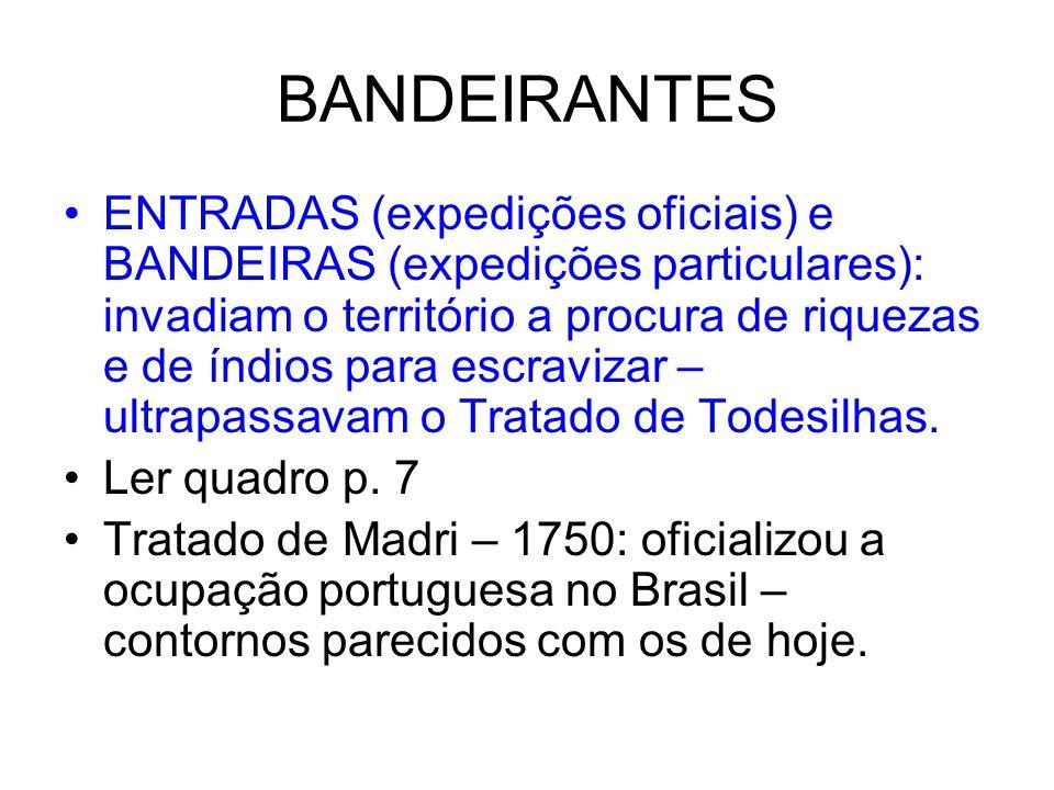 BANDEIRANTES ENTRADAS (expedições oficiais) e BANDEIRAS (expedições particulares): invadiam o território a procura de riquezas e de índios para escravizar – ultrapassavam o Tratado de Todesilhas.