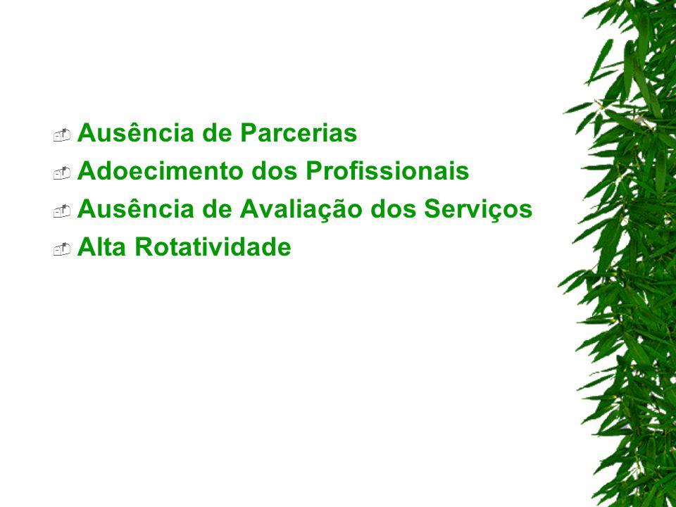Ausência de Parcerias Adoecimento dos Profissionais Ausência de Avaliação dos Serviços Alta Rotatividade