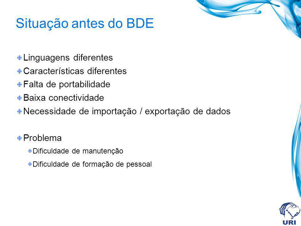 Situação antes do BDE Linguagens diferentes Características diferentes Falta de portabilidade Baixa conectividade Necessidade de importação / exportaç