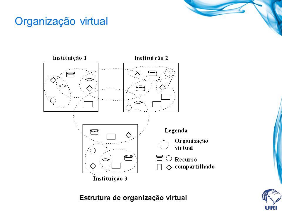 Organização virtual Estrutura de organização virtual