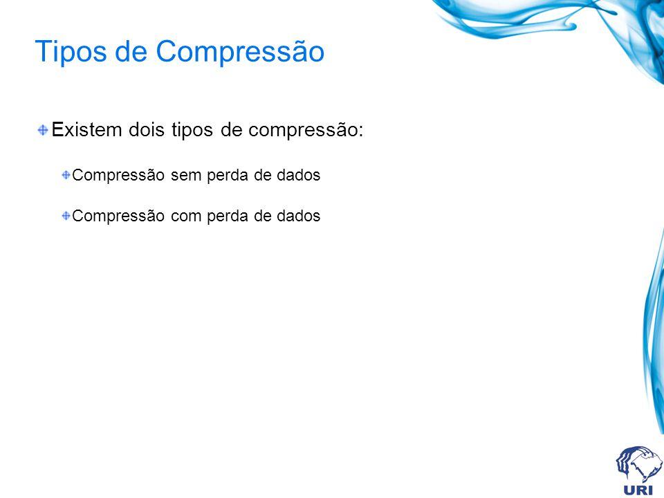 Tipos de Compressão Existem dois tipos de compressão: Compressão sem perda de dados Compressão com perda de dados