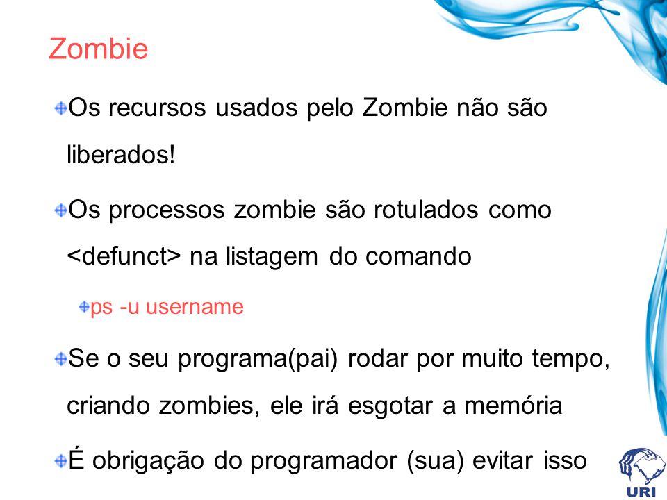 Zombie Os recursos usados pelo Zombie não são liberados! Os processos zombie são rotulados como na listagem do comando ps -u username Se o seu program