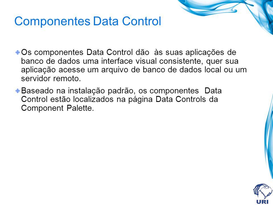 Componentes Data Control Os componentes Data Control dão às suas aplicações de banco de dados uma interface visual consistente, quer sua aplicação acesse um arquivo de banco de dados local ou um servidor remoto.