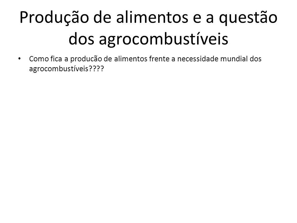 Como fica a producão de alimentos frente a necessidade mundial dos agrocombustíveis???? Produção de alimentos e a questão dos agrocombustíveis