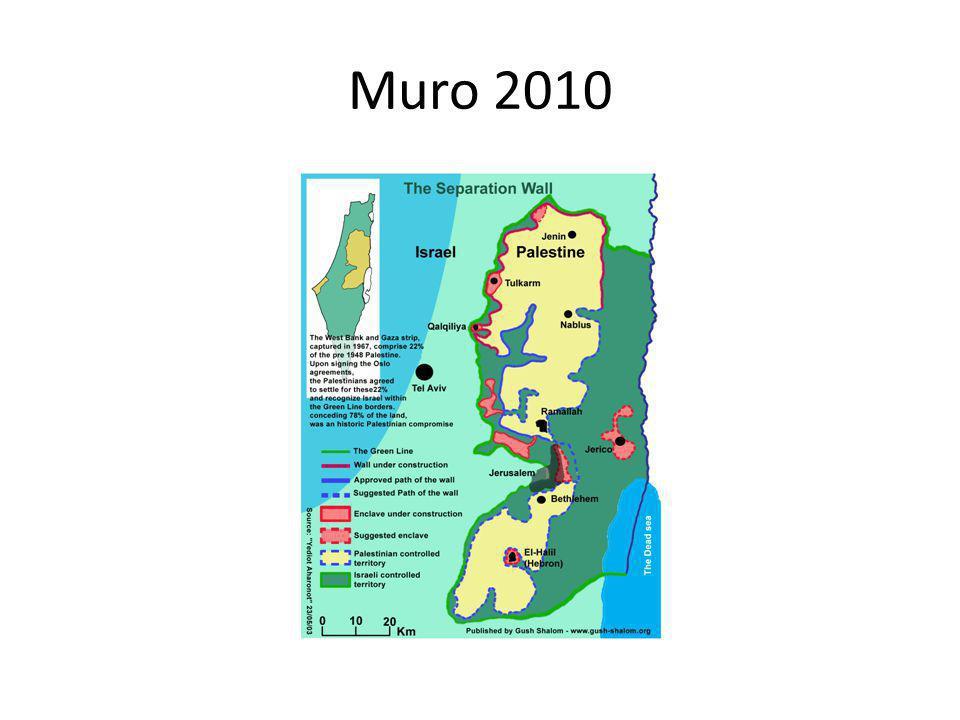 Muro 2010