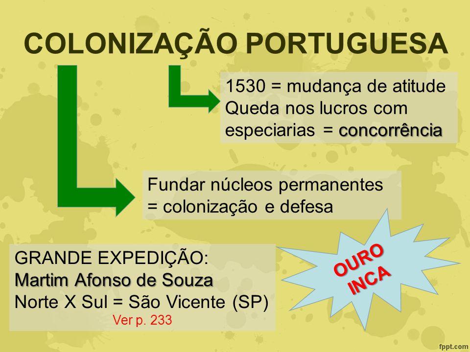 COLONIZAÇÃO PORTUGUESA 1530 = mudança de atitude concorrência Queda nos lucros com especiarias = concorrência Fundar núcleos permanentes = colonização