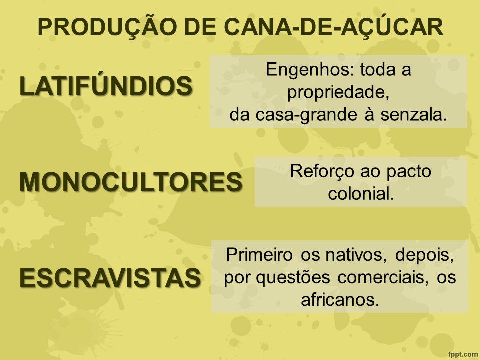 PRODUÇÃO DE CANA-DE-AÇÚCARLATIFÚNDIOSMONOCULTORESESCRAVISTAS Engenhos: toda a propriedade, da casa-grande à senzala. Reforço ao pacto colonial. Primei