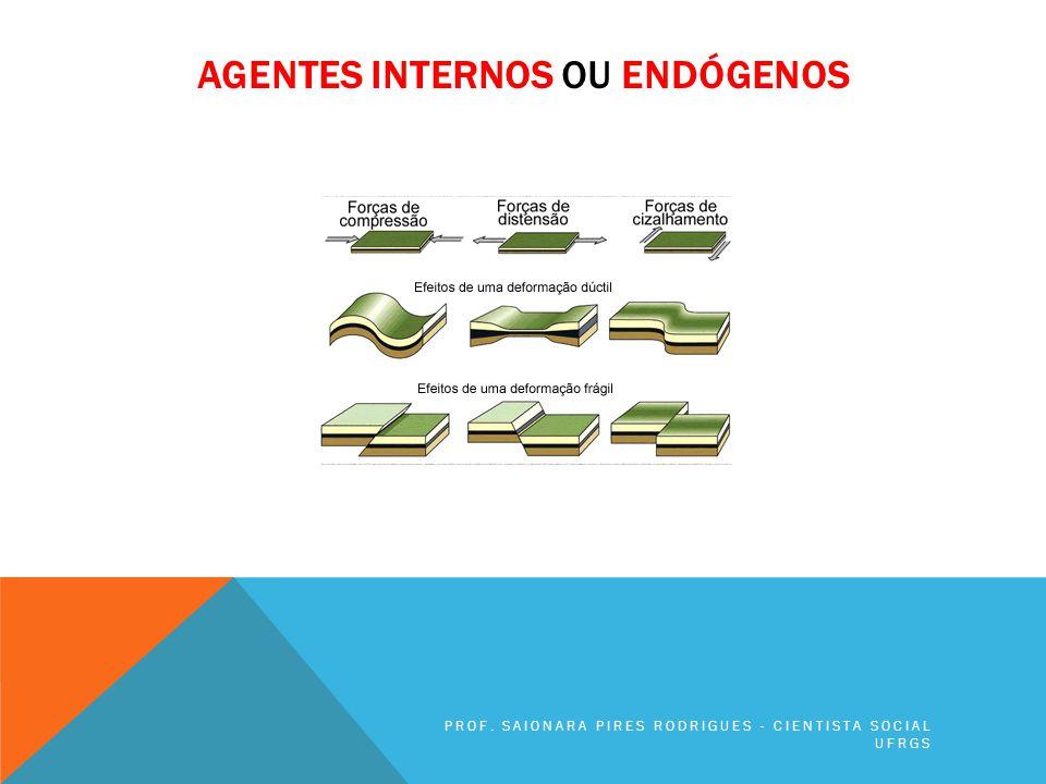 AGENTES INTERNOS OU ENDÓGENOS PROF. SAIONARA PIRES RODRIGUES - CIENTISTA SOCIAL UFRGS