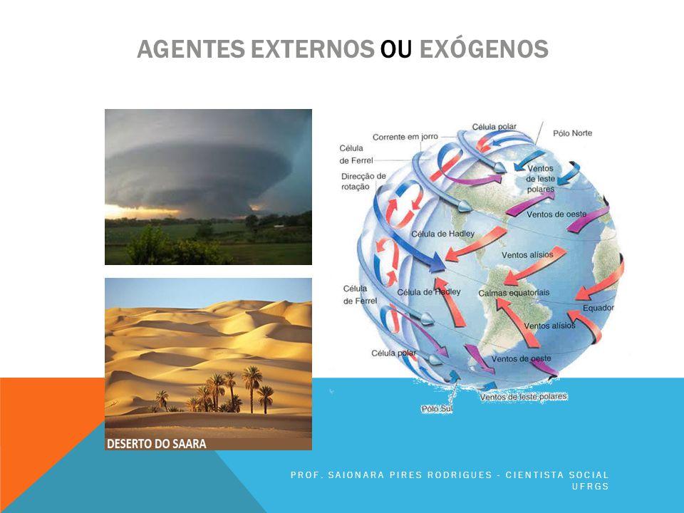AGENTES EXTERNOS OU EXÓGENOS PROF. SAIONARA PIRES RODRIGUES - CIENTISTA SOCIAL UFRGS