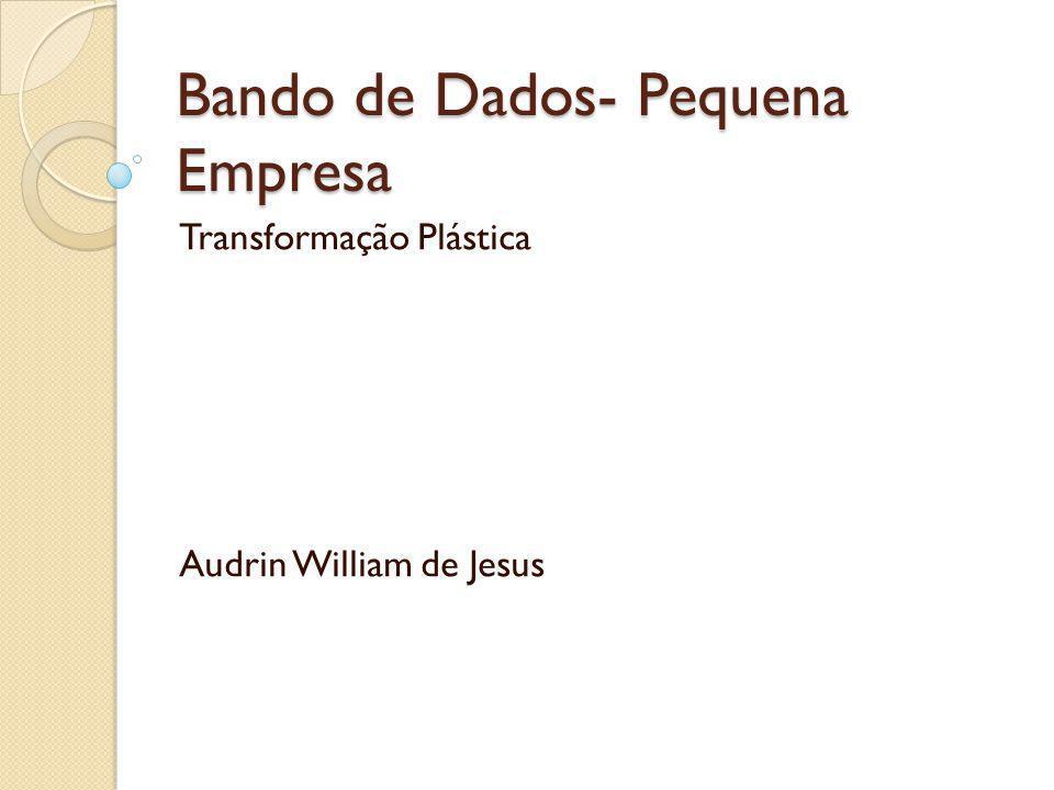 Bando de Dados- Pequena Empresa Transformação Plástica Audrin William de Jesus