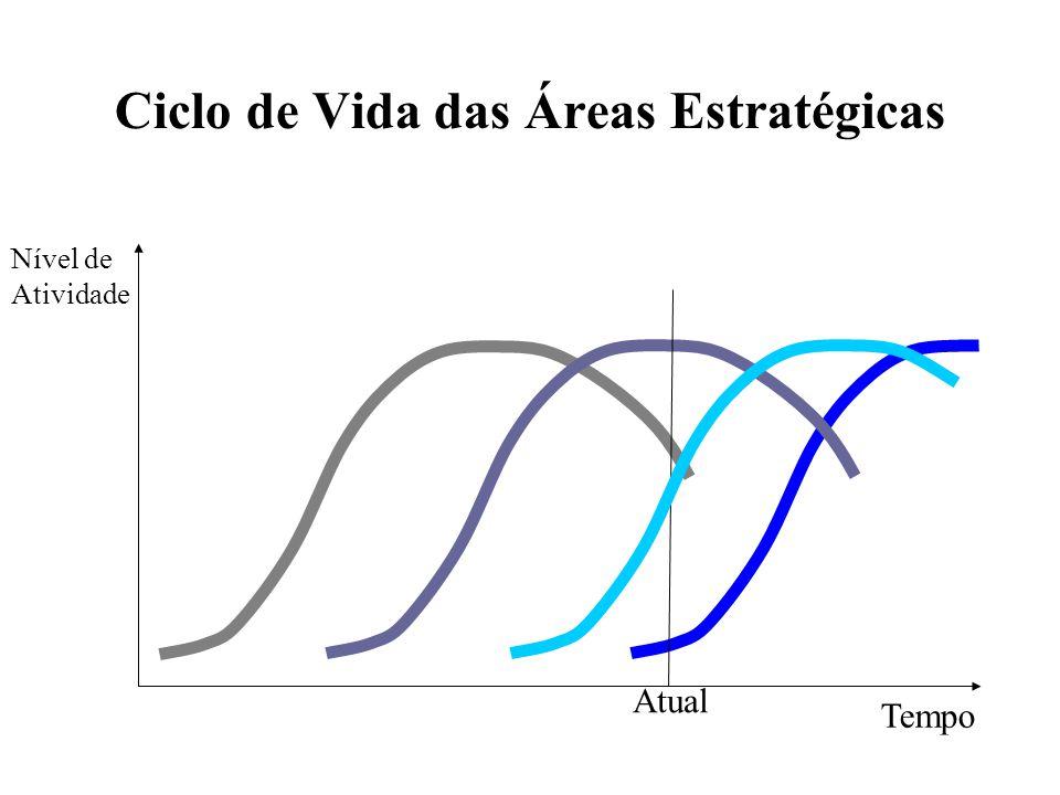 Ciclo de Vida das Áreas Estratégicas Tempo Atual Nível de Atividade