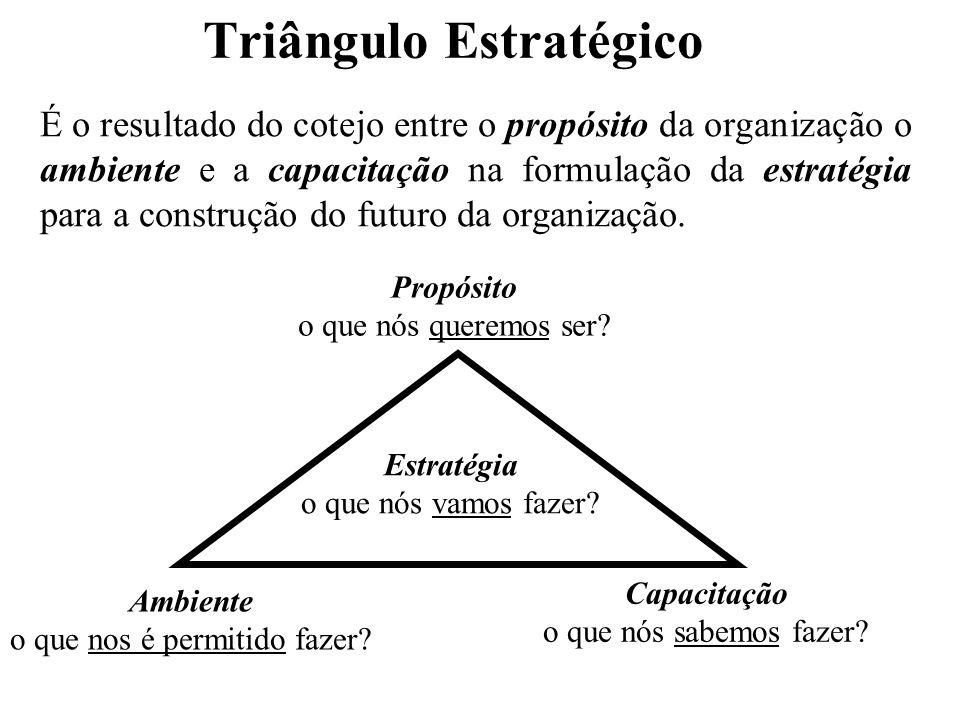 Triângulo Estratégico É o resultado do cotejo entre o propósito da organização o ambiente e a capacitação na formulação da estratégia para a construçã