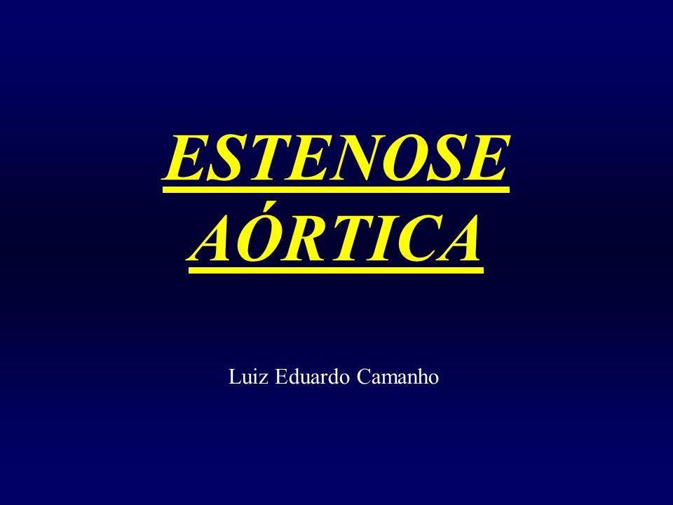 ESTENOSE AÓRTICA Luiz Eduardo Camanho