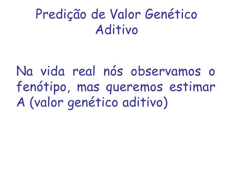 Predição de Valor Genético Aditivo Na vida real nós observamos o fenótipo, mas queremos estimar A (valor genético aditivo)