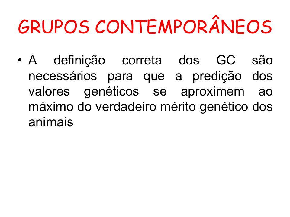 GRUPOS CONTEMPORÂNEOS A definição correta dos GC são necessários para que a predição dos valores genéticos se aproximem ao máximo do verdadeiro mérito