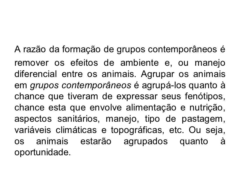 A razão da formação de grupos contemporâneos é remover os efeitos de ambiente e, ou manejo diferencial entre os animais. Agrupar os animais em grupos