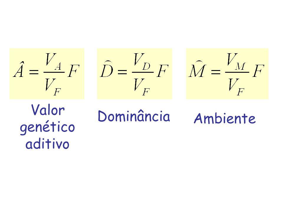 EXEMPLO VGA carneiro = 5 x 0,4 = 2,0 mm Admitindo que a média dos VGA das ovelhas seja 0 Valor esperado da progênie: (2,0 + 0)/2 = 1,0 mm