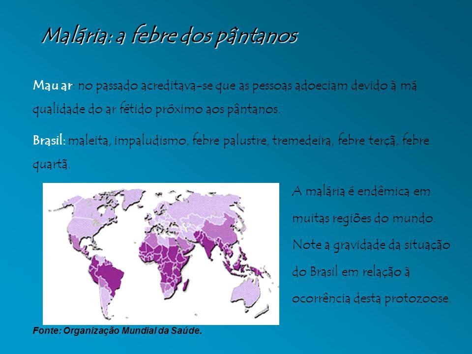 Malária: a febre dos pântanos Mau ar: no passado acreditava-se que as pessoas adoeciam devido à má qualidade do ar fétido próximo aos pântanos. Brasil