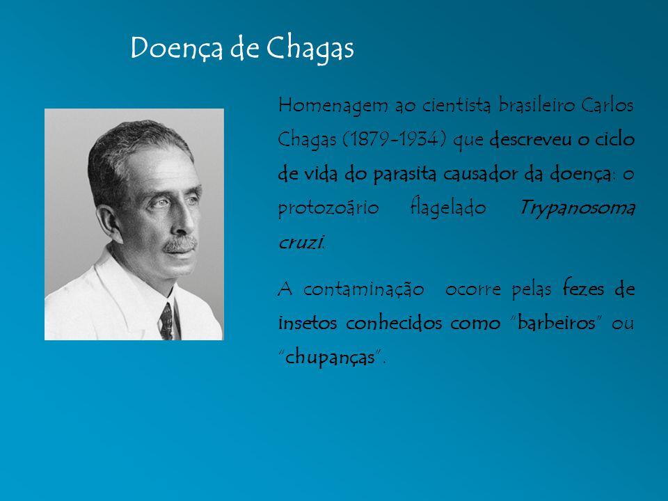 Homenagem ao cientista brasileiro Carlos Chagas (1879-1934) que descreveu o ciclo de vida do parasita causador da doença: o protozoário flagelado Tryp