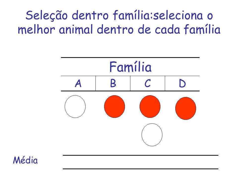 Seleção dentro família:seleciona o melhor animal dentro de cada família Família ABCD Média