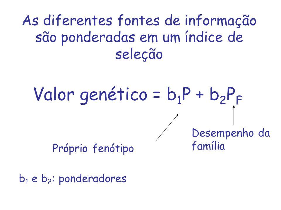 As diferentes fontes de informação são ponderadas em um índice de seleção Valor genético = b 1 P + b 2 P F Próprio fenótipo Desempenho da família b 1