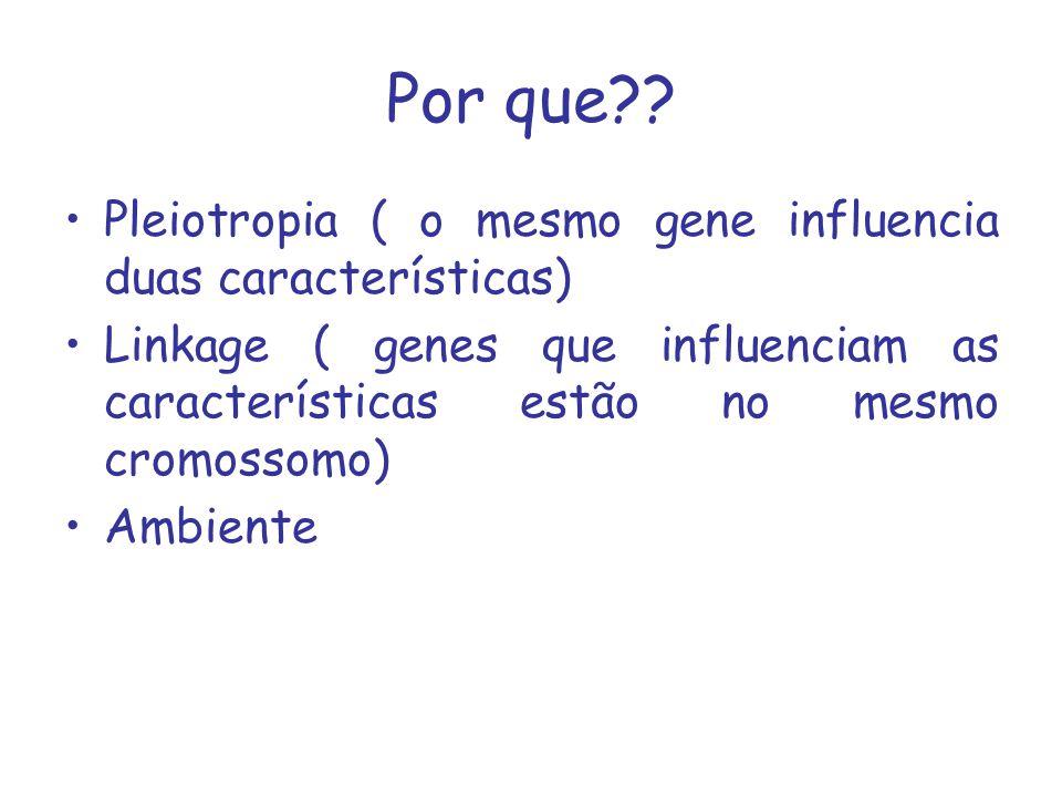 Por que?? Pleiotropia ( o mesmo gene influencia duas características) Linkage ( genes que influenciam as características estão no mesmo cromossomo) Am