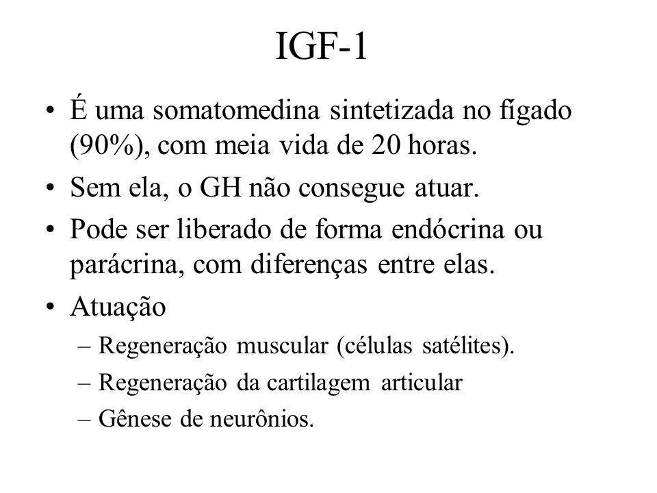 IGF-1 É uma somatomedina sintetizada no fígado (90%), com meia vida de 20 horas. Sem ela, o GH não consegue atuar. Pode ser liberado de forma endócrin