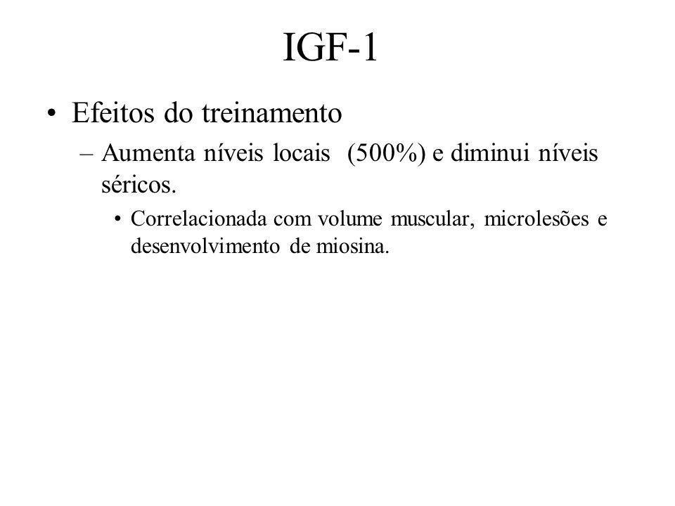 IGF-1 Efeitos do treinamento –Aumenta níveis locais (500%) e diminui níveis séricos. Correlacionada com volume muscular, microlesões e desenvolvimento