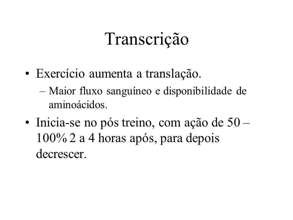 Transcrição Exercício aumenta a translação. –Maior fluxo sanguíneo e disponibilidade de aminoácidos. Inicia-se no pós treino, com ação de 50 – 100% 2