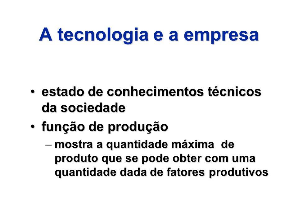 A tecnologia e a empresa estado de conhecimentos técnicos da sociedadeestado de conhecimentos técnicos da sociedade função de produçãofunção de produç