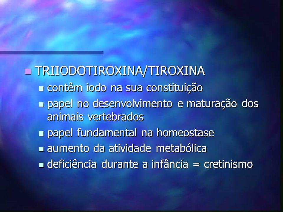 TRIIODOTIROXINA/TIROXINA TRIIODOTIROXINA/TIROXINA contêm iodo na sua constituição contêm iodo na sua constituição papel no desenvolvimento e maturação