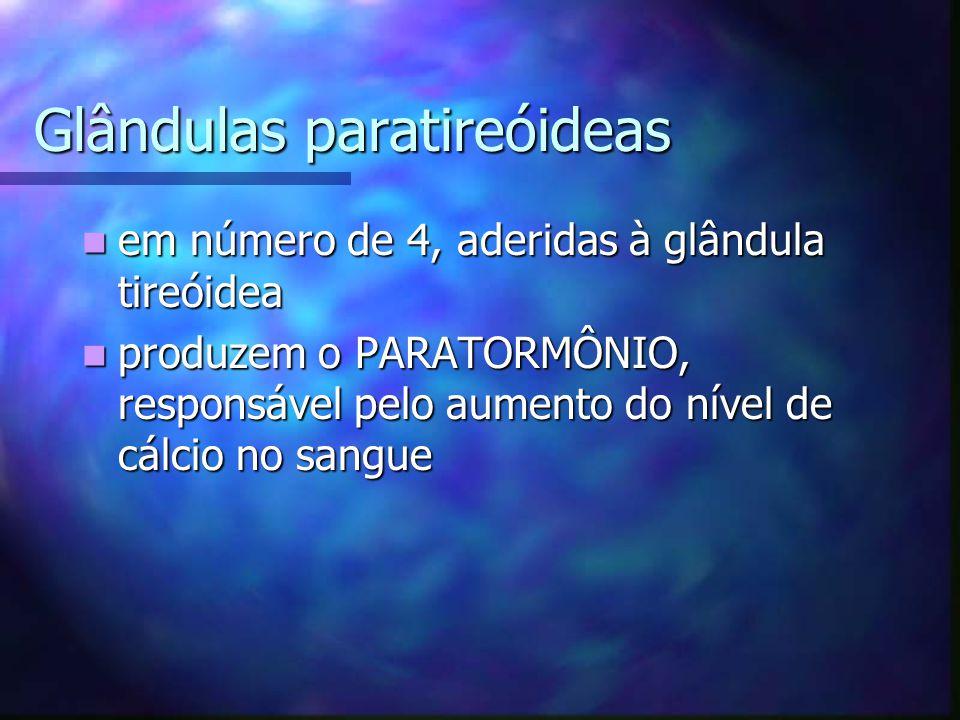 Glândulas paratireóideas em número de 4, aderidas à glândula tireóidea em número de 4, aderidas à glândula tireóidea produzem o PARATORMÔNIO, responsá