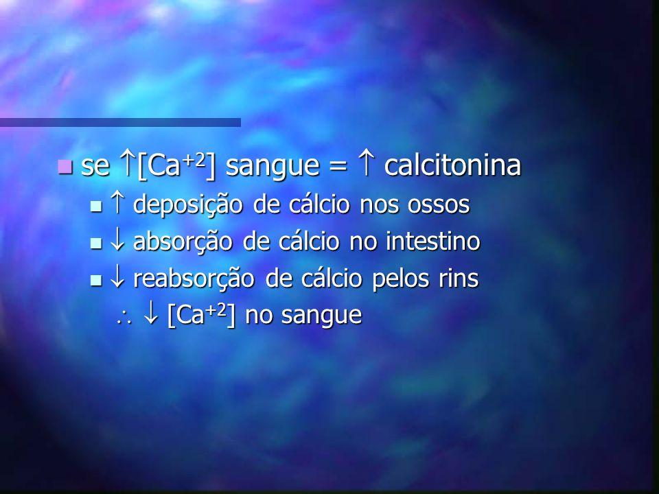 se [Ca +2 ] sangue = calcitonina se [Ca +2 ] sangue = calcitonina deposição de cálcio nos ossos deposição de cálcio nos ossos absorção de cálcio no in