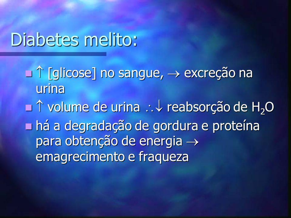 Diabetes melito: [glicose] no sangue, excreção na urina [glicose] no sangue, excreção na urina volume de urina reabsorção de H 2 O volume de urina rea