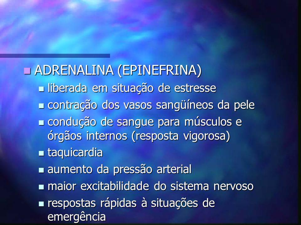 ADRENALINA (EPINEFRINA) ADRENALINA (EPINEFRINA) liberada em situação de estresse liberada em situação de estresse contração dos vasos sangüíneos da pe