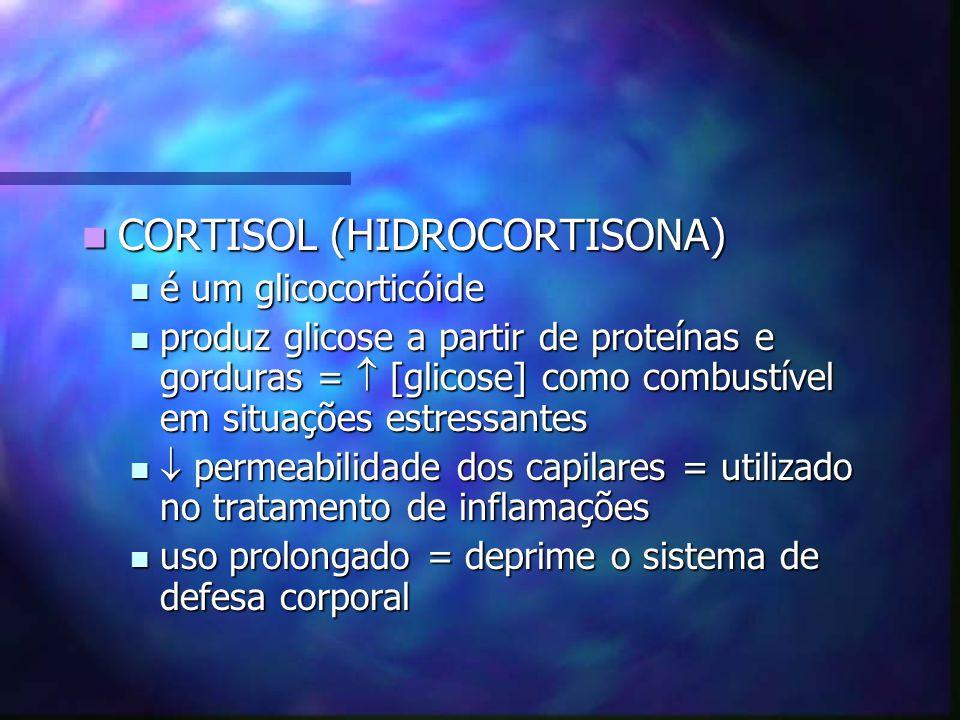 CORTISOL (HIDROCORTISONA) CORTISOL (HIDROCORTISONA) é um glicocorticóide é um glicocorticóide produz glicose a partir de proteínas e gorduras = [glico