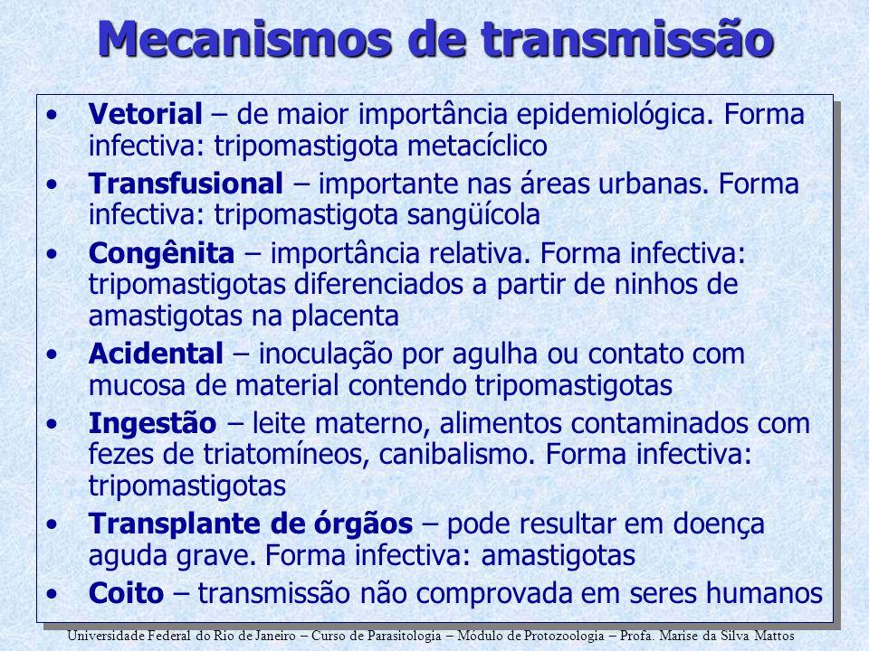 Universidade Federal do Rio de Janeiro – Curso de Parasitologia – Módulo de Protozoologia – Profa. Marise da Silva Mattos Mecanismos de transmissão Ve