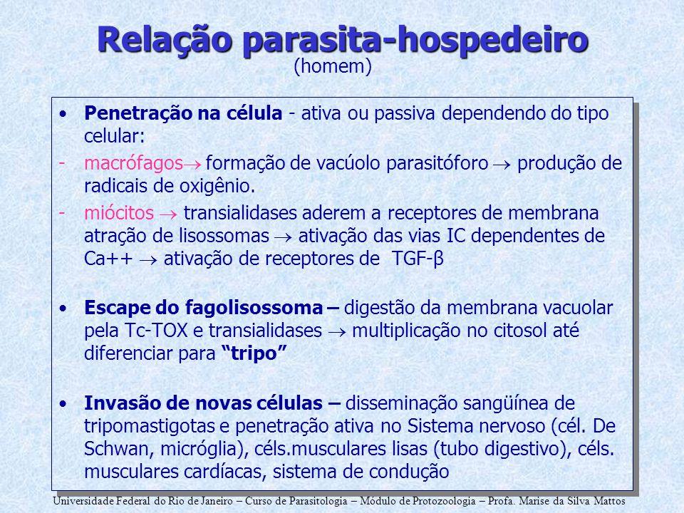 Universidade Federal do Rio de Janeiro – Curso de Parasitologia – Módulo de Protozoologia – Profa. Marise da Silva Mattos Relação parasita-hospedeiro