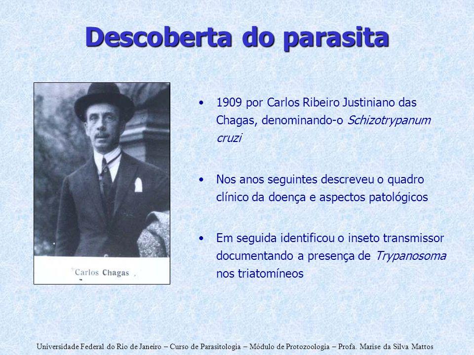 Universidade Federal do Rio de Janeiro – Curso de Parasitologia – Módulo de Protozoologia – Profa. Marise da Silva Mattos Descoberta do parasita 1909