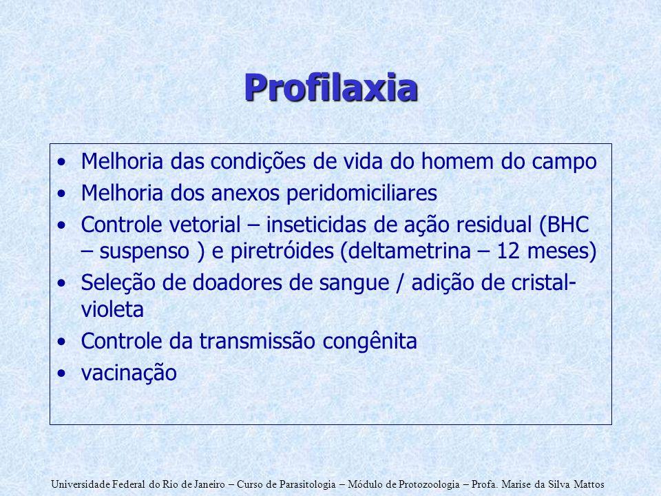 Universidade Federal do Rio de Janeiro – Curso de Parasitologia – Módulo de Protozoologia – Profa. Marise da Silva Mattos Profilaxia Melhoria das cond