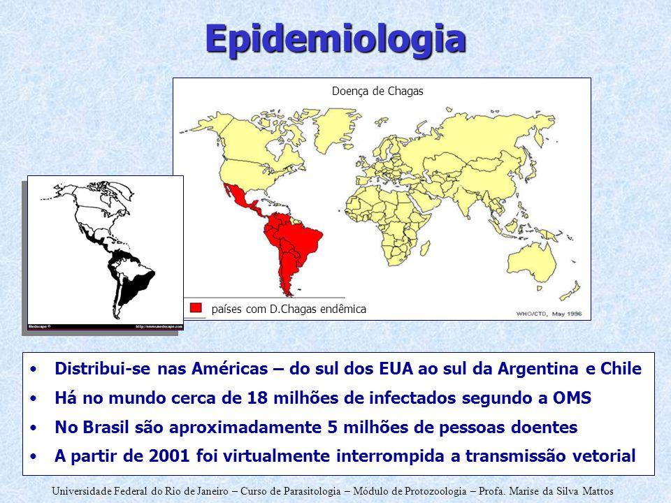 Universidade Federal do Rio de Janeiro – Curso de Parasitologia – Módulo de Protozoologia – Profa. Marise da Silva Mattos Epidemiologia Distribui-se n