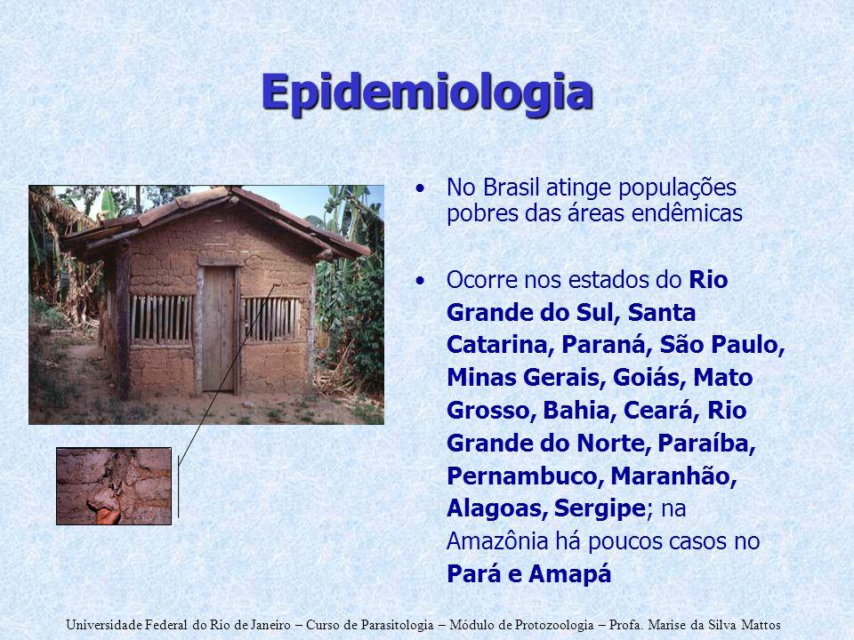 Universidade Federal do Rio de Janeiro – Curso de Parasitologia – Módulo de Protozoologia – Profa. Marise da Silva Mattos Epidemiologia No Brasil atin