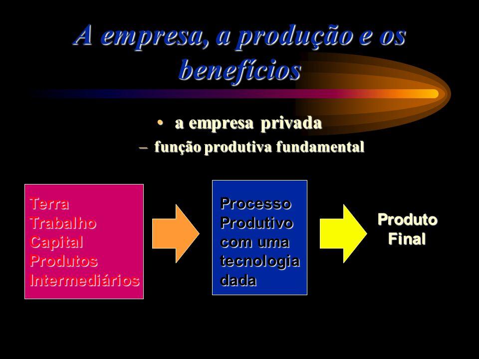 A empresa, a produção e os benefícios a empresa privadaa empresa privada –função produtiva fundamental ProcessoProdutivo com uma tecnologiadadaTerraTr