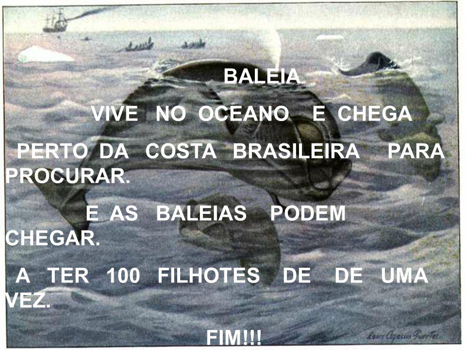 BALEIA VIVE NO OCEANO E CHEGA PERTO DA COSTA BRASILEIRA PARA PROCURAR. E AS BALEIAS PODEM CHEGAR. A TER 100 FILHOTES DE DE UMA VEZ. FIM!!!