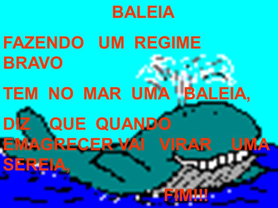 BALEIA FAZENDO UM REGIME BRAVO TEM NO MAR UMA BALEIA, DIZ QUE QUANDO EMAGRECER VAI VIRAR UMA SEREIA, FIM!!!