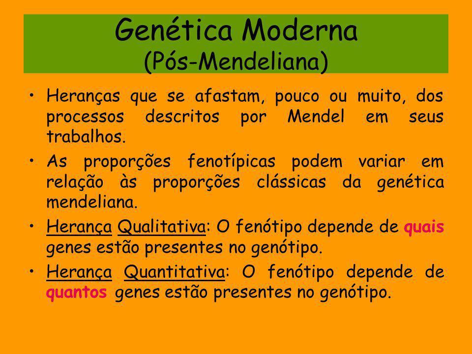 Genética Moderna (Pós-Mendeliana) Heranças que se afastam, pouco ou muito, dos processos descritos por Mendel em seus trabalhos. As proporções fenotíp