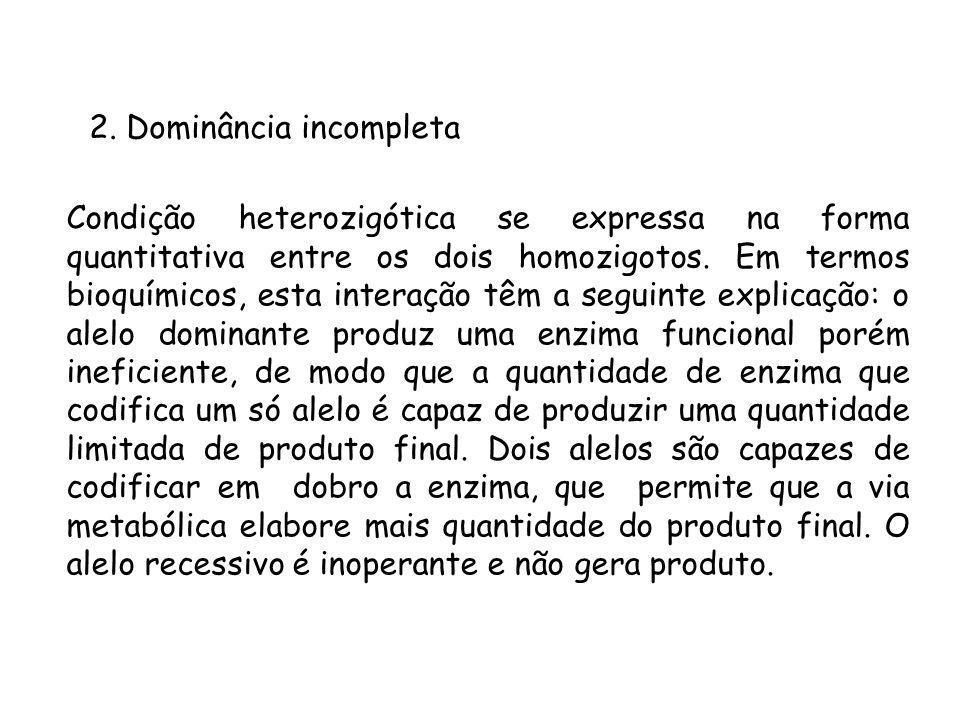 2. Dominância incompleta Condição heterozigótica se expressa na forma quantitativa entre os dois homozigotos. Em termos bioquímicos, esta interação tê